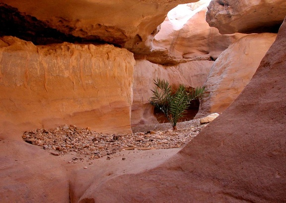 Canyon en fente (Slot canyon)