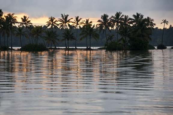 Backwaters (Kerala)